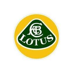Lotus Car Pdf Manual Wiring Diagram Fault Codes Dtc