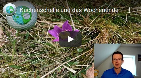 Küchenschelle und das Wochenende - Infovideo