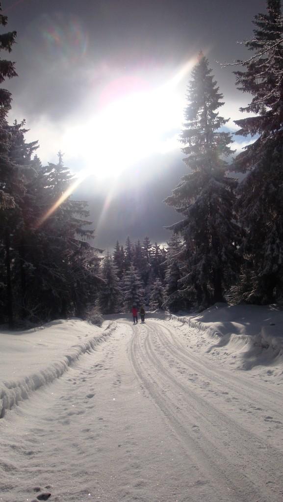 Winterwanderweg im Fichtelgebirge