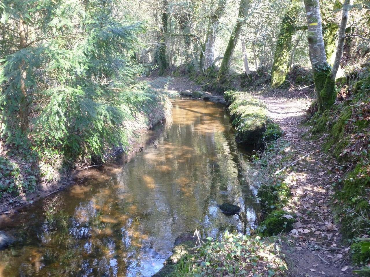 Le ruisseau de St Urlo
