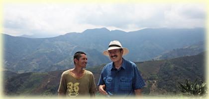 Kaffeeregion bei Betania, Antioquia