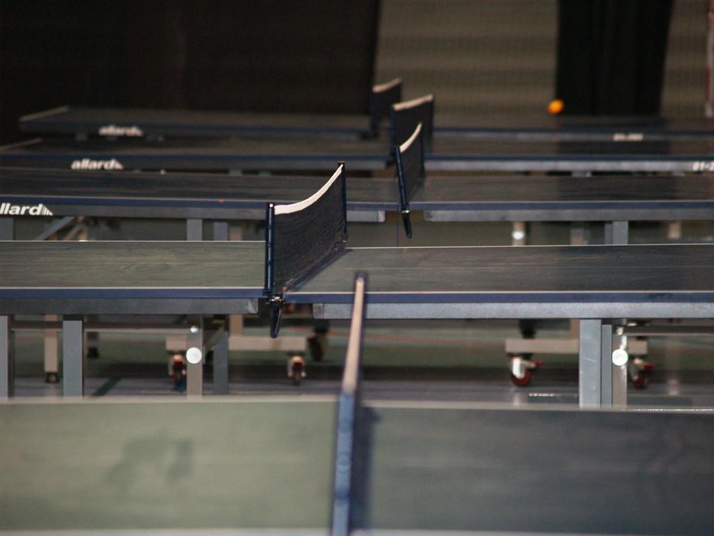 Eté Jeunes Pâques 2010, tennis de table