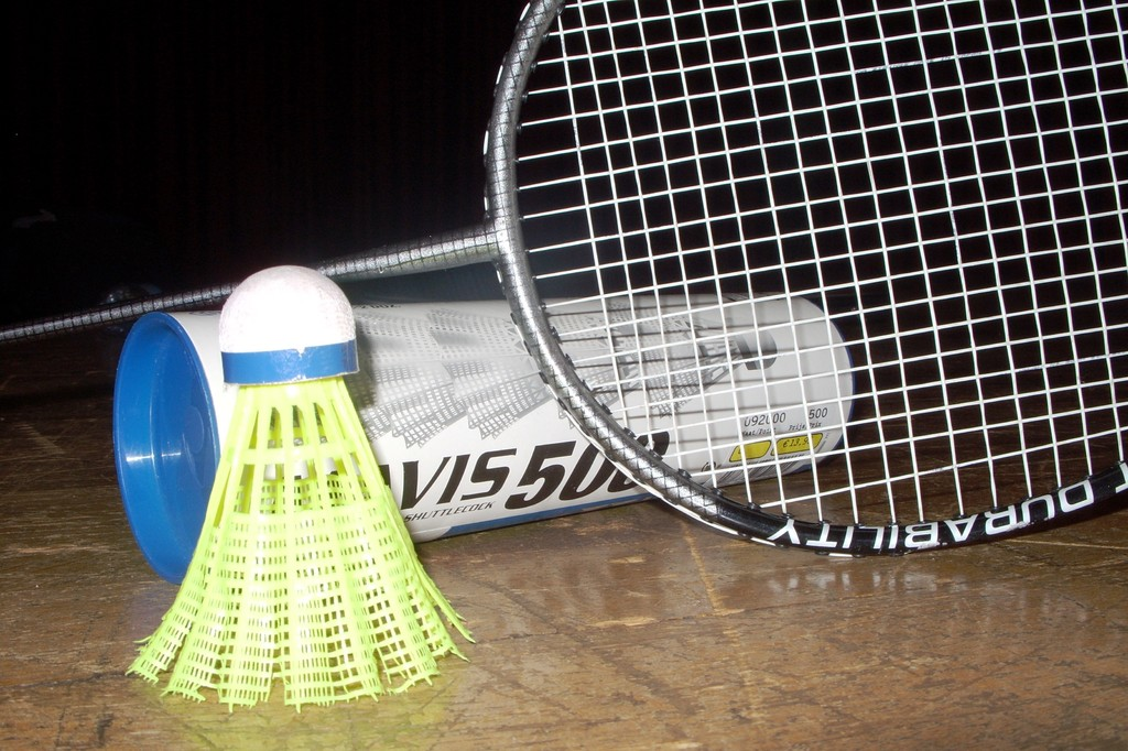 Eté Jeunes 2009, badminton