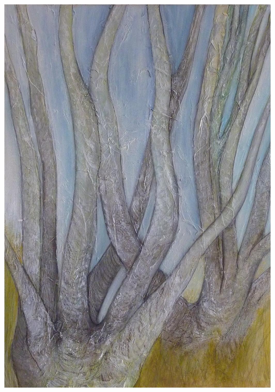Birken II , 50 x 70 / 2013