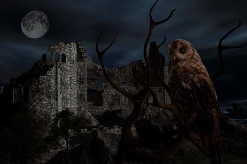 Stolberger Burg als Ruine - 3