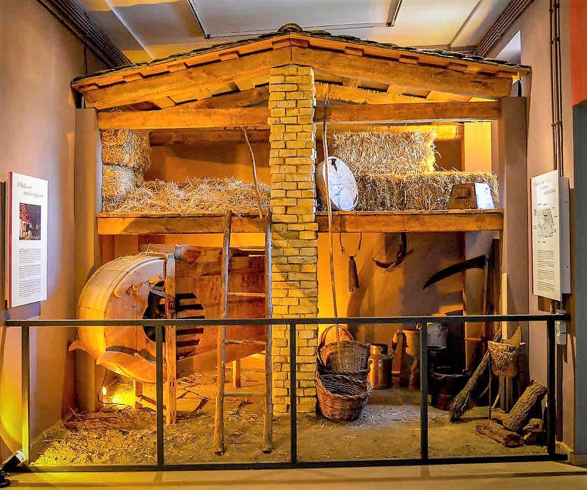 Museu Cerdà