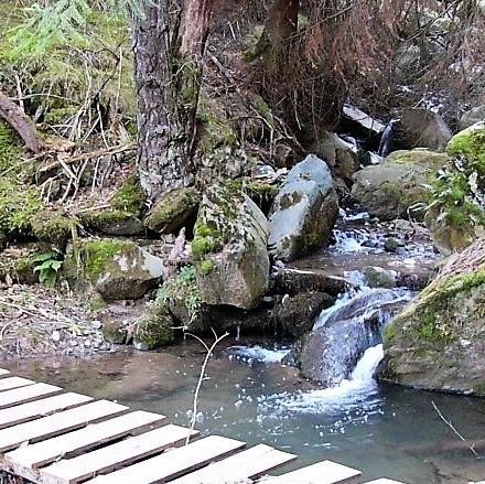 Camí de la Ribera d'Alp