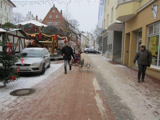 Schlittenfahrt im Husky-Hundeschlitten!