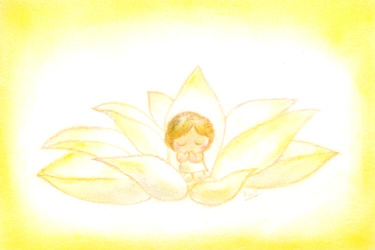 蓮 「いのり」