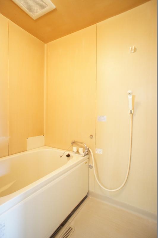 コーポハナミズキ102浴室