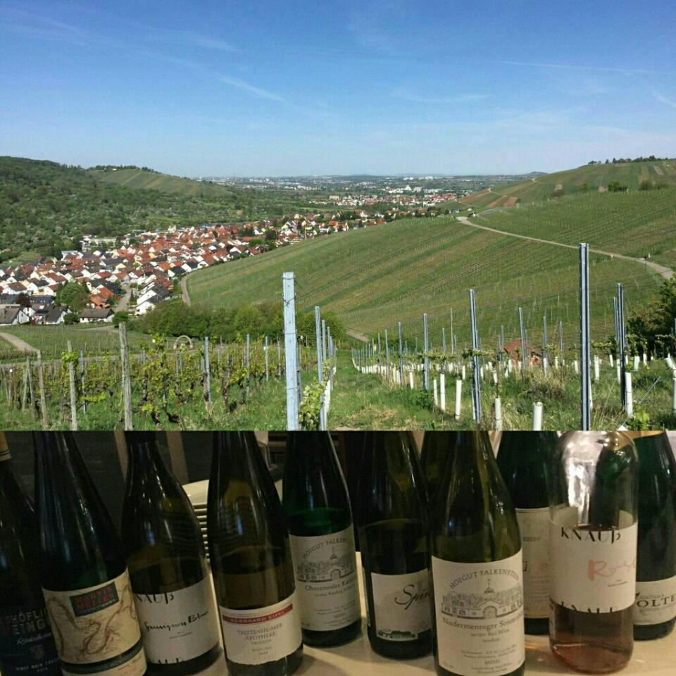 初のドイツワイン会を開催