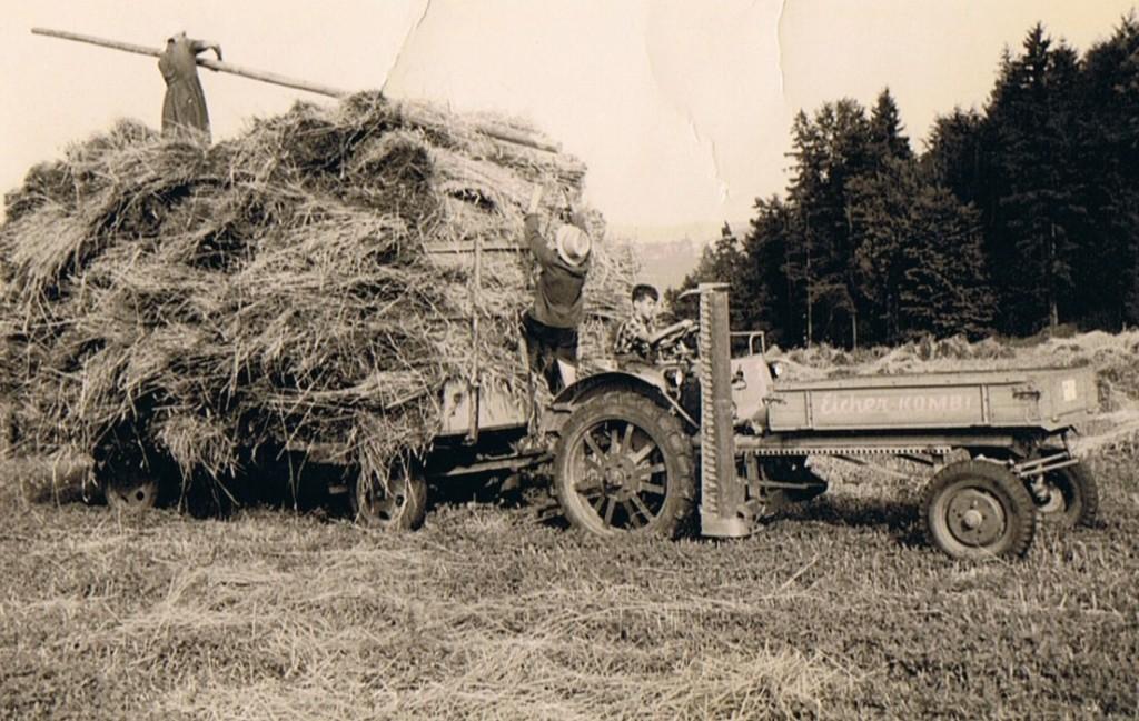 Getreideernte am Lodischhof
