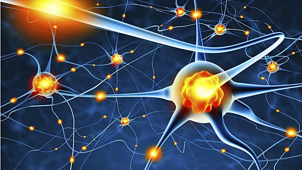 Alzheimer y otras enfermedades mentales.