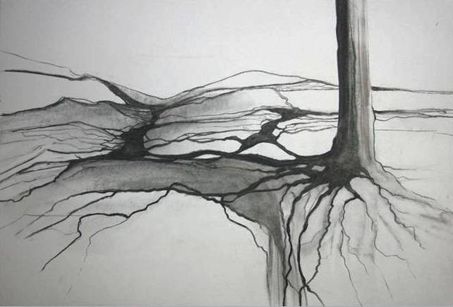 """""""Verwurzelt"""" - Naturkohle - 2011"""