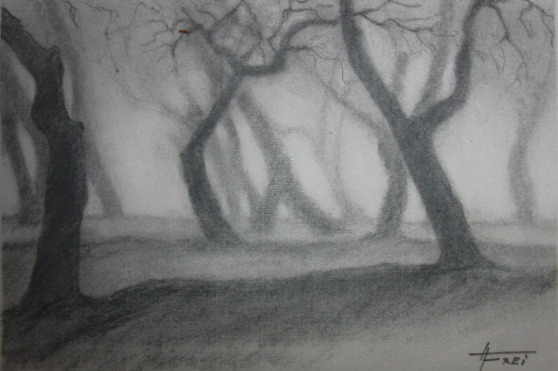 """ART HFrei - """"Baumgestalten"""" - Naturkohle - 2011"""