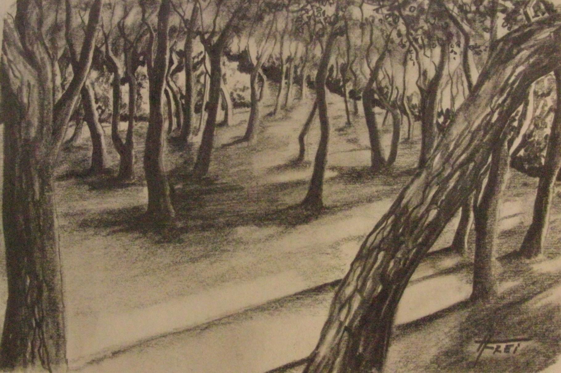 """ART HFrei - """"Baia Porto Selvaggio"""" - Naturkohle - 2011"""