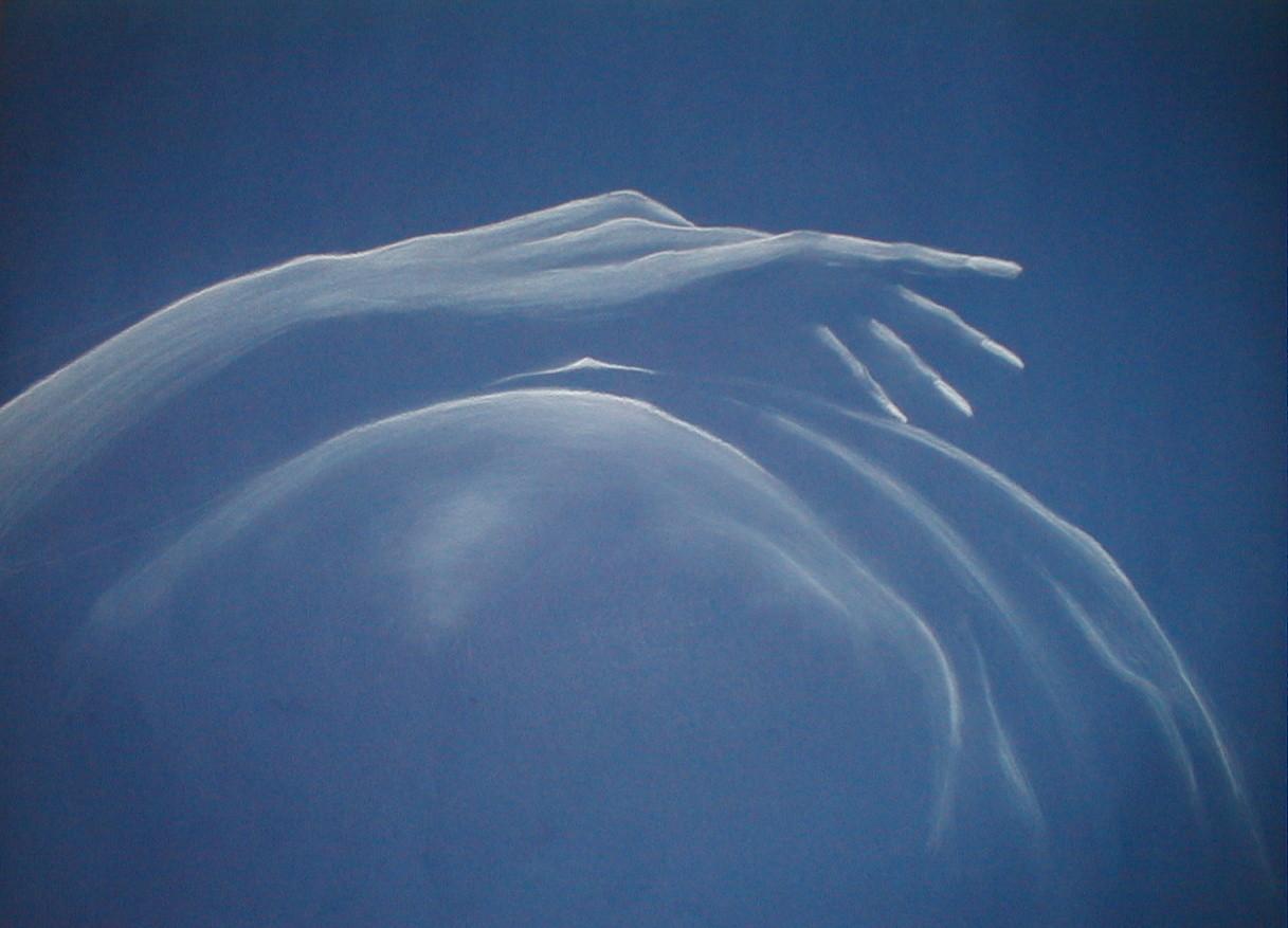 """ART HFrei - """"Streicheleinheit"""" - Pastell - 2006"""