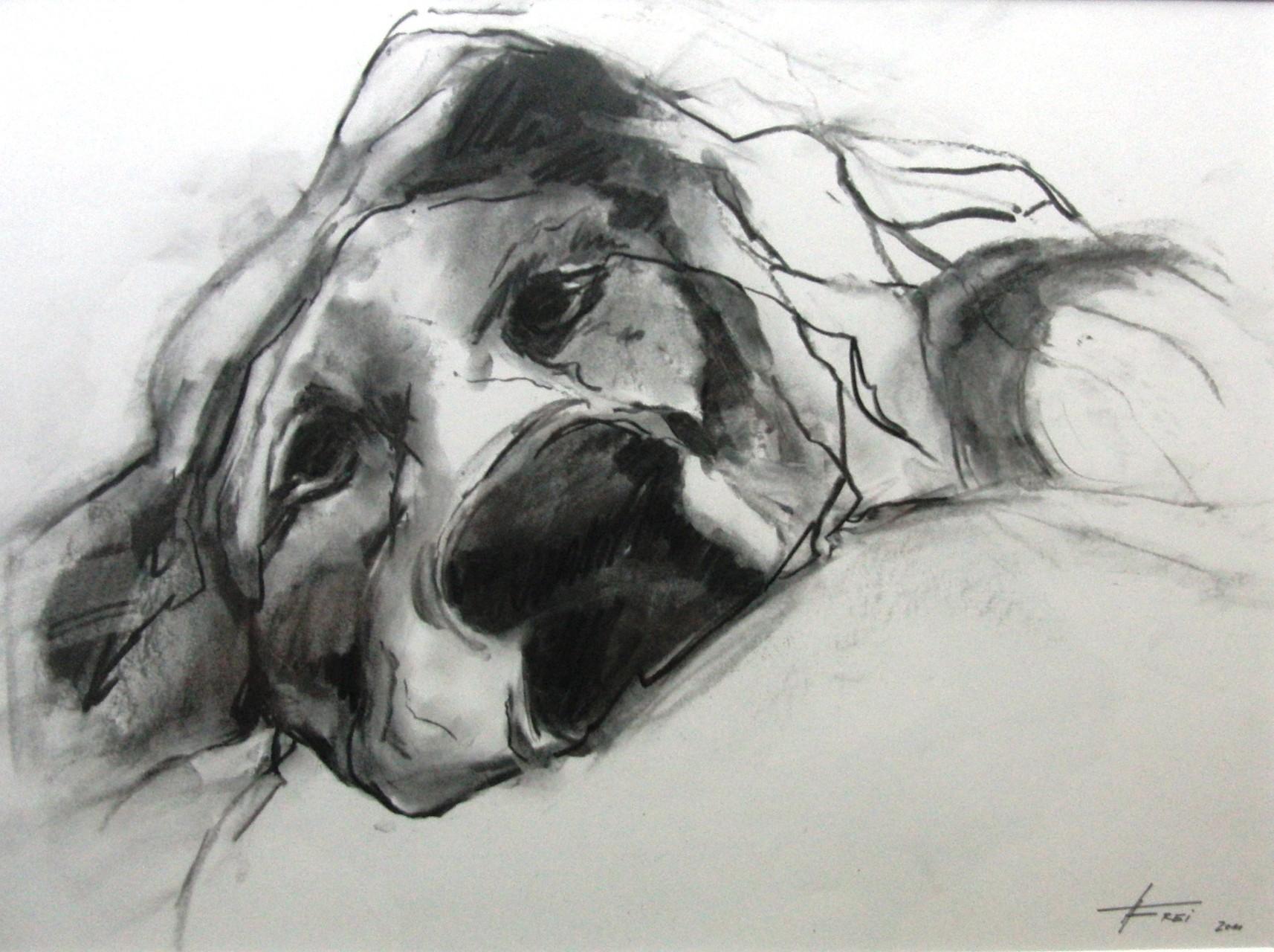 """ART HFrei - """"Krank ..."""" - Naturkohle - 2011"""