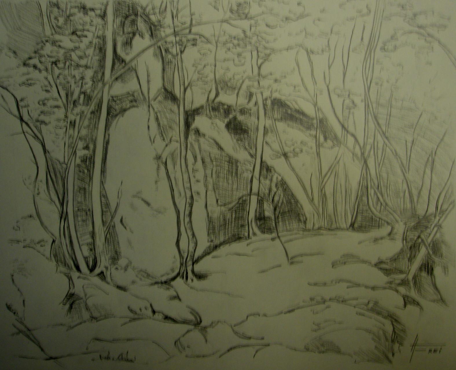 """Wald-Felsen-Studie""- Bleistift - 2007"