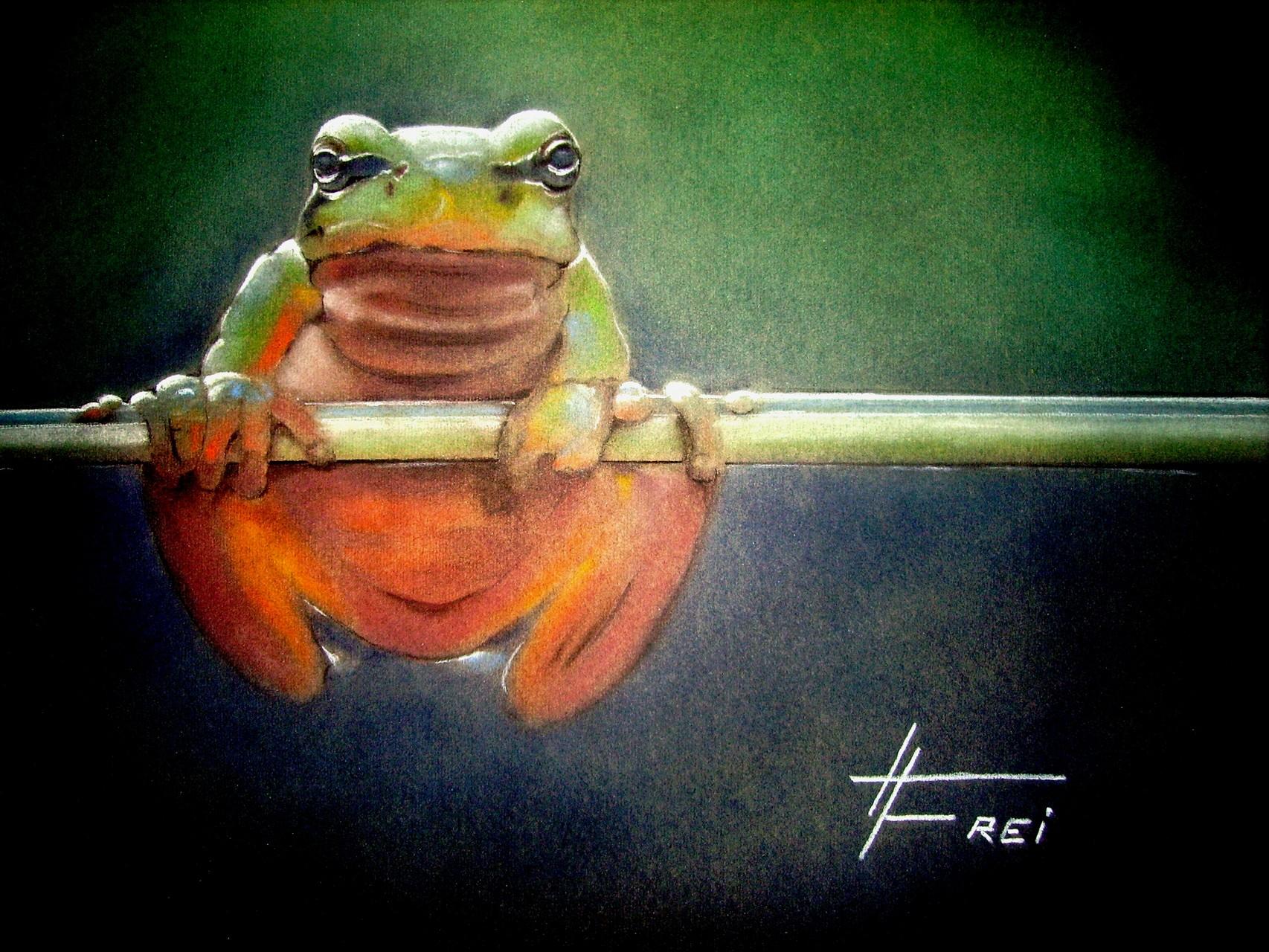 "ART HFrei - ""Quaksi beim Training"" - Pastell - 2006"