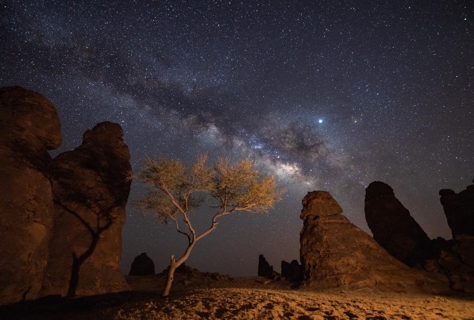 تقع العلا على بعد 1100 كيلومتر من الرياض في شمال غرب المملكة العربية السعودية، وهي منطقة ذات تراث طبيعي وإنساني غير مسبوق. تغطي العلا مساحة شاسعة تصل إلى 22.561 كيلومترًا مربعًا، وتشمل واحة خصبة وجبالًا شاهقة من الحجر الرملي ومواقع تراث ثقافي قديم يعود تاريخها إلى آلاف السنين عندما حكمتها مملكتي لحيان والأنباط. الموقع الأكثر شهرة واعترافًا في العلا هو الحِجر وهو أول موقع تراث عالمي لليونسكو في المملكة العربية السعودية