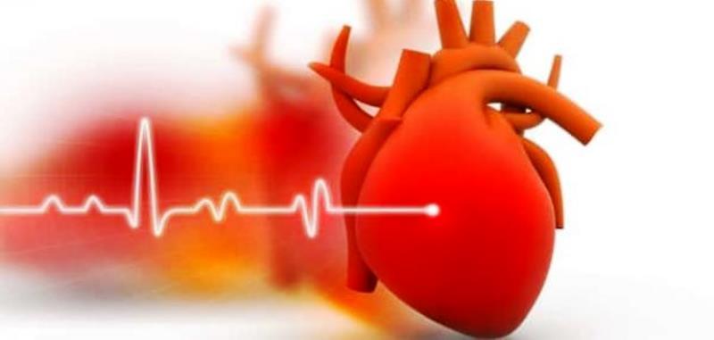 """تُعرف """"جلطة القلب"""" بالنوبة القلبية، وهي تلف جزء من عضلة القلب نتيجة حدوث انسداد في تدفق الدم إليها، وتعد جلطة القلب حالة طبية طارئة تستدعي التدخل الفوري لإنقاذ حياة المصاب"""