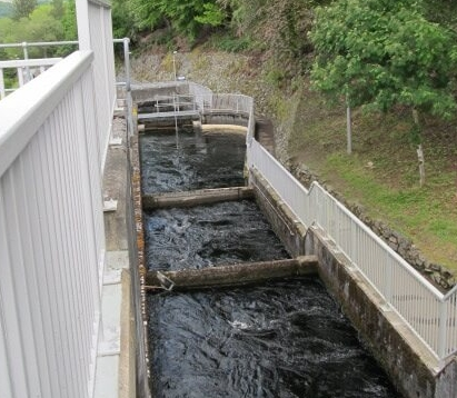 The Pitlochry fish ladder consists of 34 separate pools