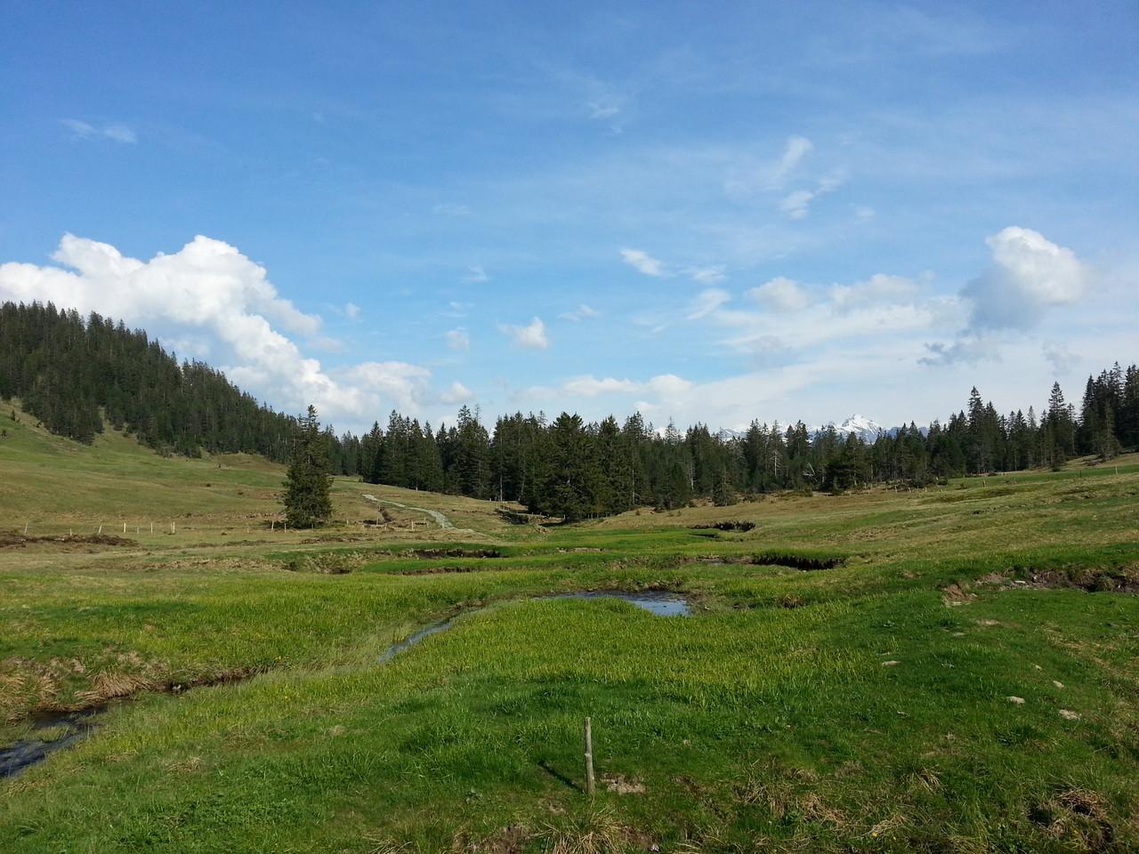 Blick von der Hütte, ich liebe das Tal!!