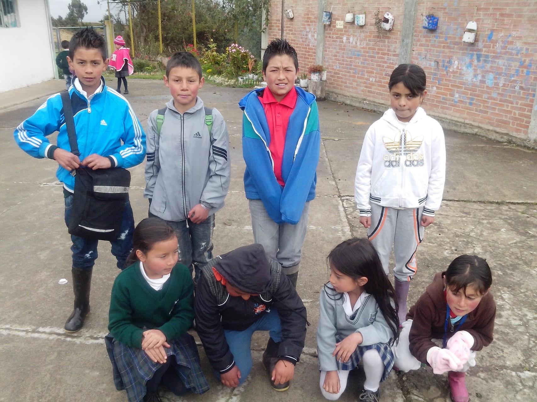Primaria CED Rural Los Arrayanes