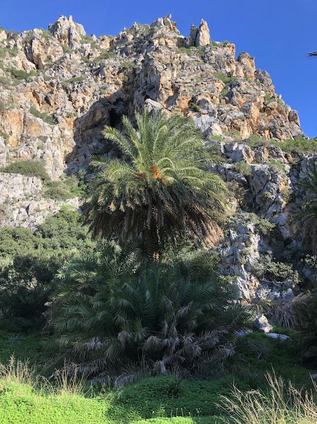 Kreta im Lockdown (November 2020 - Januar 2021)