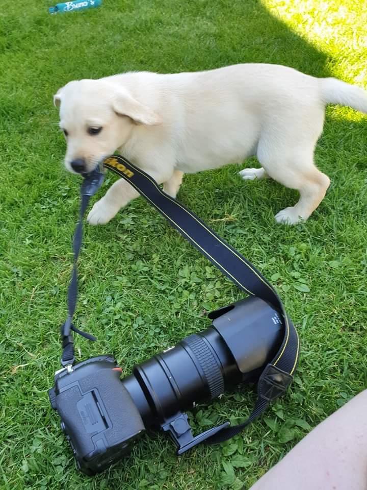 ...behind the scenes 😍 Eyla holt schon mal die Kamera... ❤