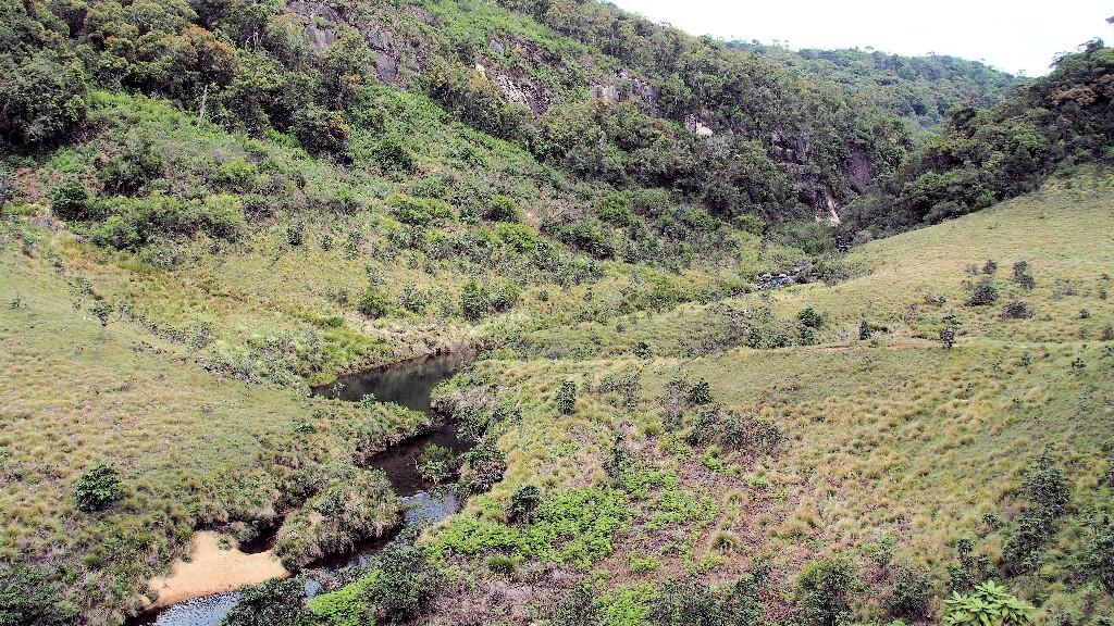 Wasserläufe durchziehen das Grasland des Horton Plain Nationalparkes und bilden artenreiche Feuchtgebiete