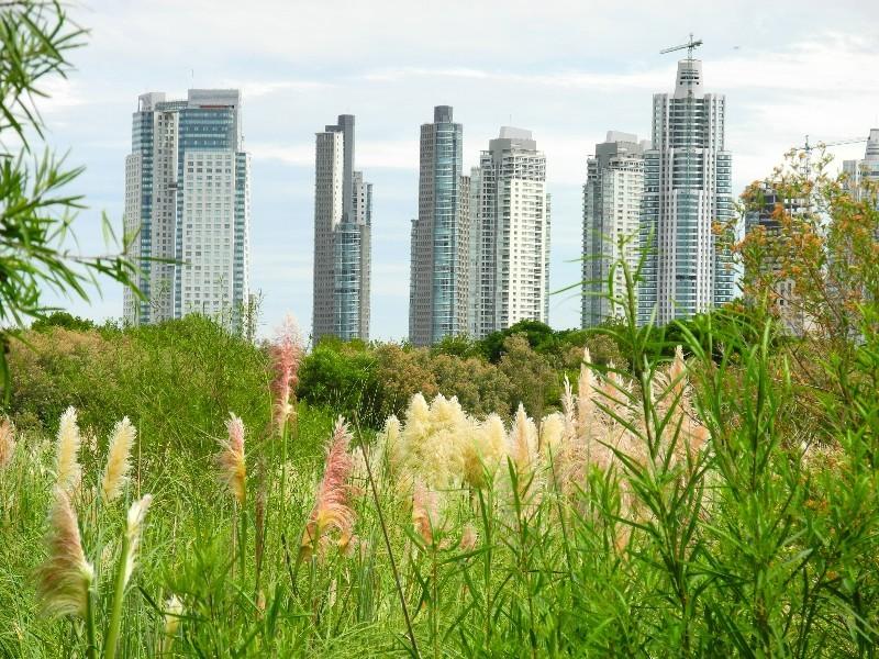 Naturpark vor den Toren von Buenos Aires
