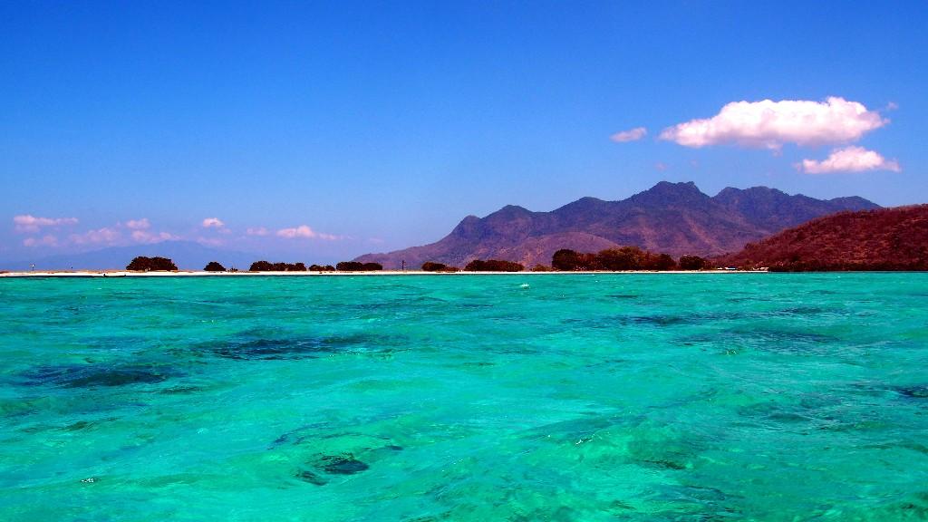 Während unserer Schnorcheltour erlebten wir ein farbenfrohes Meer, ...