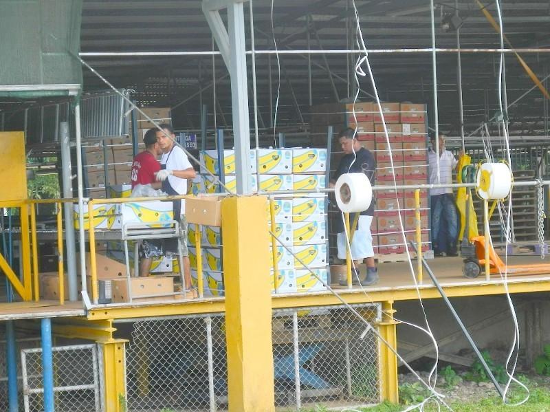 Fast in Panama - Chiquita ist überall in Costa Rica