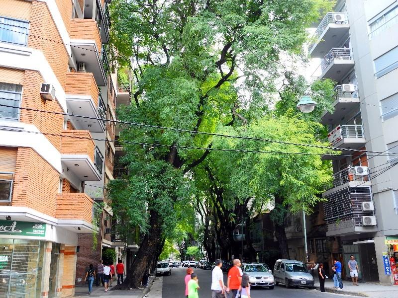 Allee aus Häusern und Bäumen in Buenos Aires