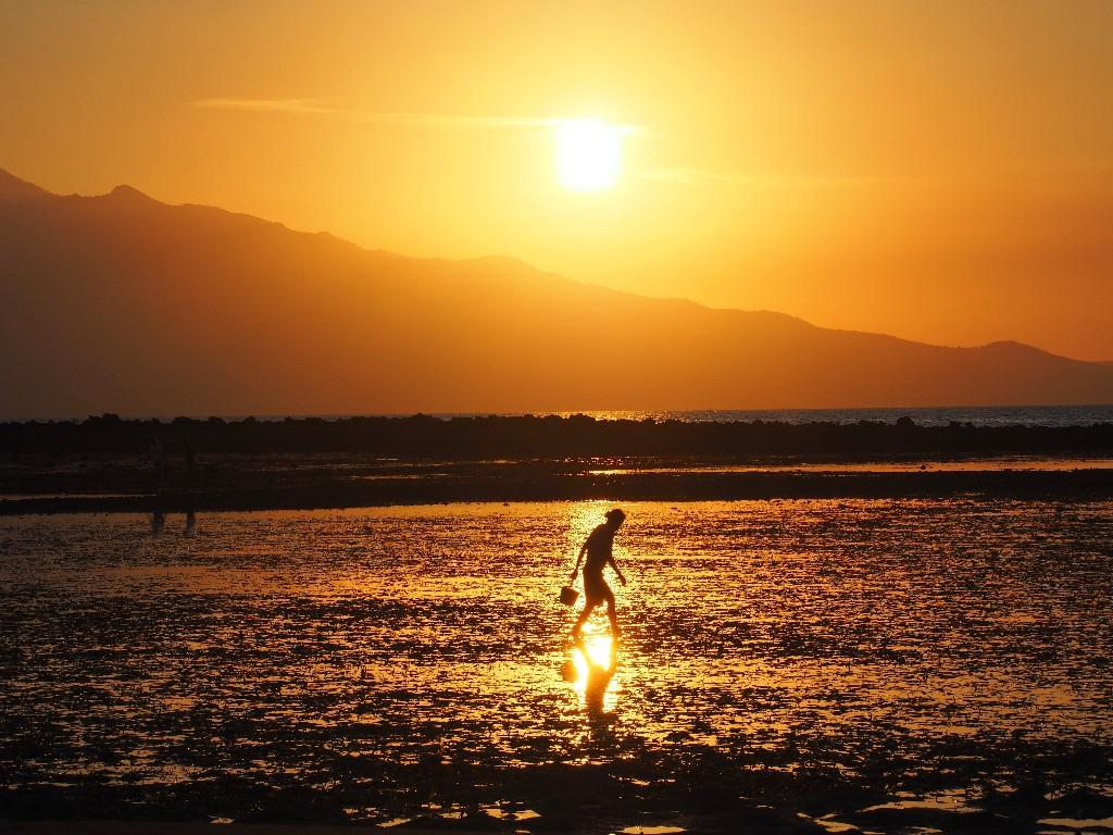 Bis zuletzt - Eine Frau nutzt die letzten Strahlen der Sonne um bei Ebbe Nahrung zu sammeln.