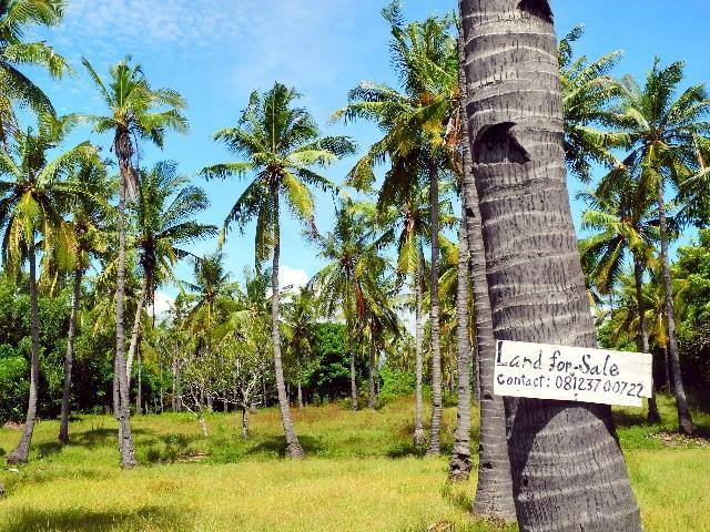 ...und Expansion auf dem ohnehin dicht besiedelten Island Gili Air...