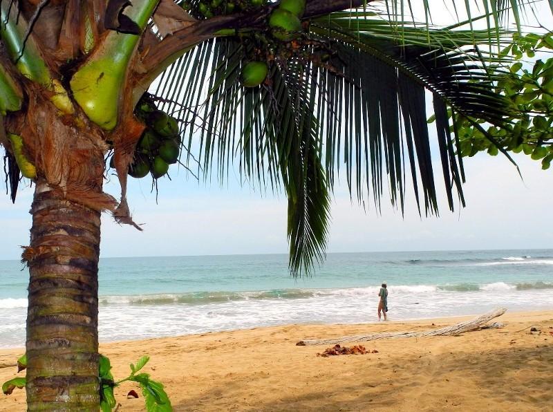 Karibische Träume 1...