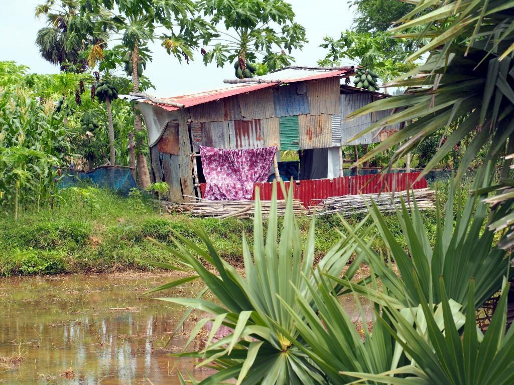 Einfach - Hütte am Stadtrand von Battambang