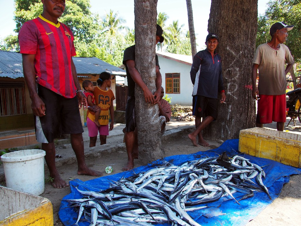 Fischverkauf in Bola.