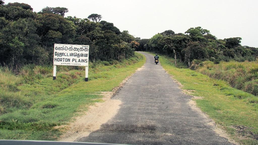 Straße auf 2000 m Höhe kurz vor der Einfahrt zum Nationalpark