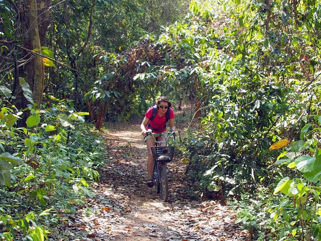 Fahrradtour - auf Don Khon geht es bisweilen durch dichten Tropenwald, ...