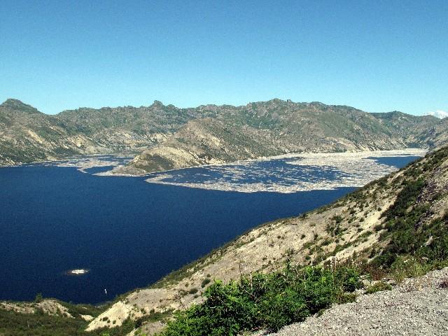 Spirit Lake - Nach dem Ausbruch knickten Bäume wie Streichhölzer um; sie schwimmen heute im Spirit Lake