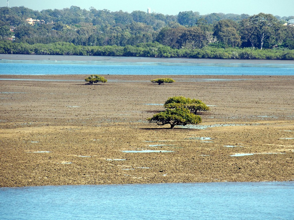Ebbe - Australische Gezeitenlandschaft