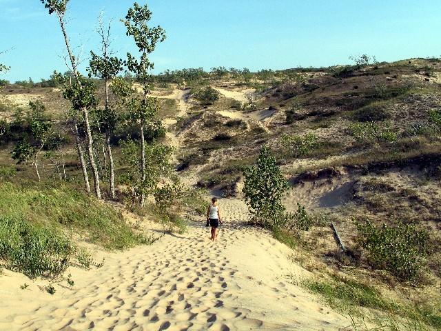 Sleeping Bear Dunes - Weite Dünenlandschaft