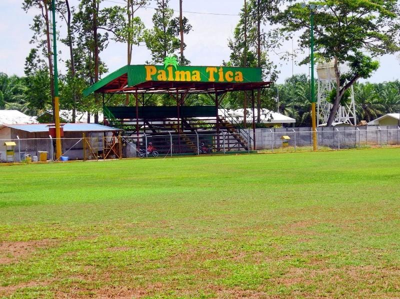 Palmöl, Palmölplantagen und Fußball