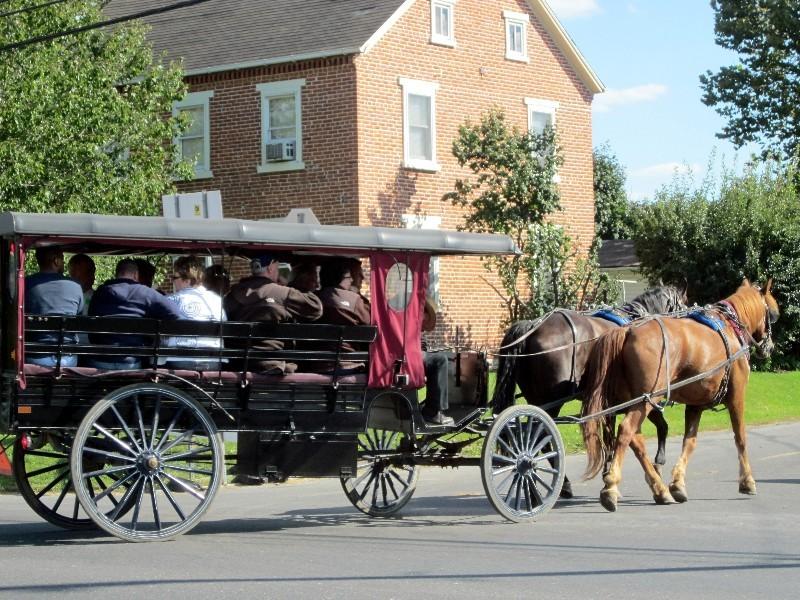 Ausflug - Amish Kutsche mit Touristen ...