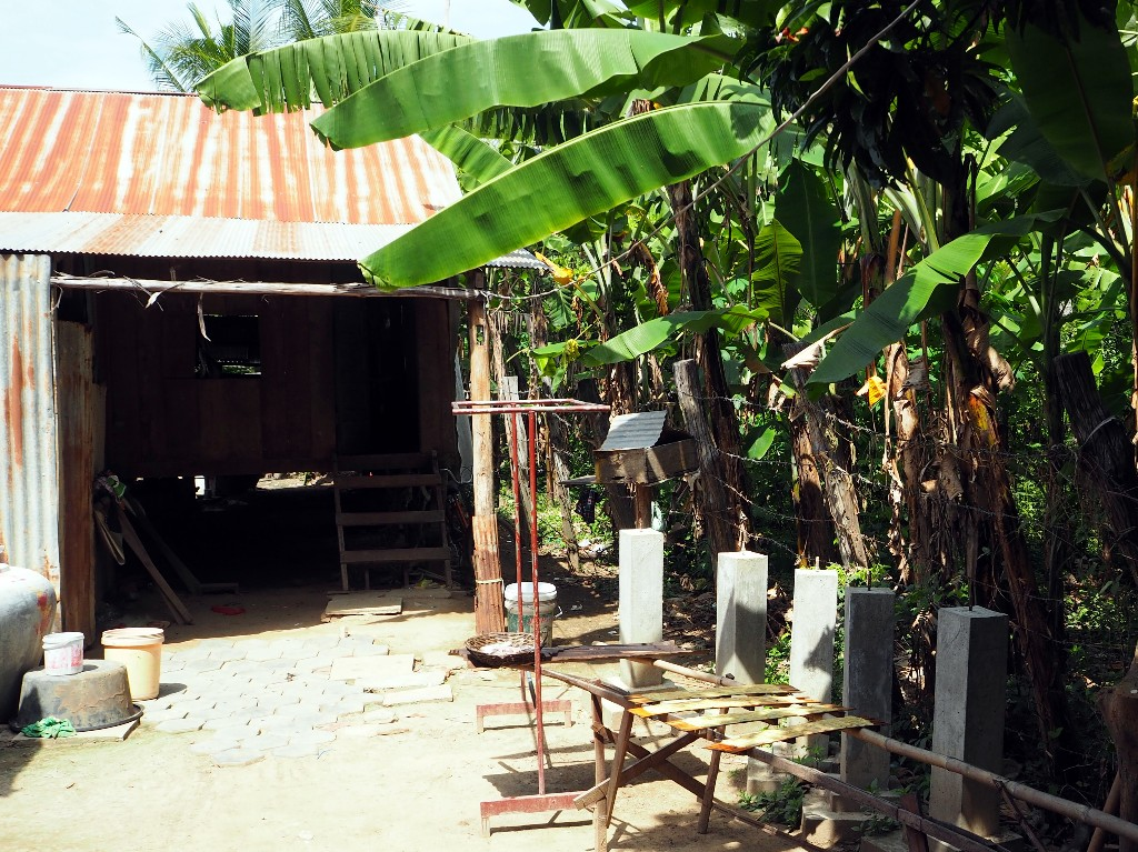 Glück gehabt - Die Familie hat eine kleines Landstück für eigene Bananenbäume
