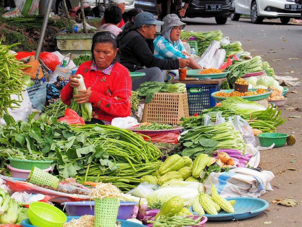 Appetitlich - die Gemüse- und ...